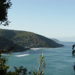 View of Wye River shore from the trees
